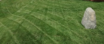 LAwn Mowing service in fayetteville, nc