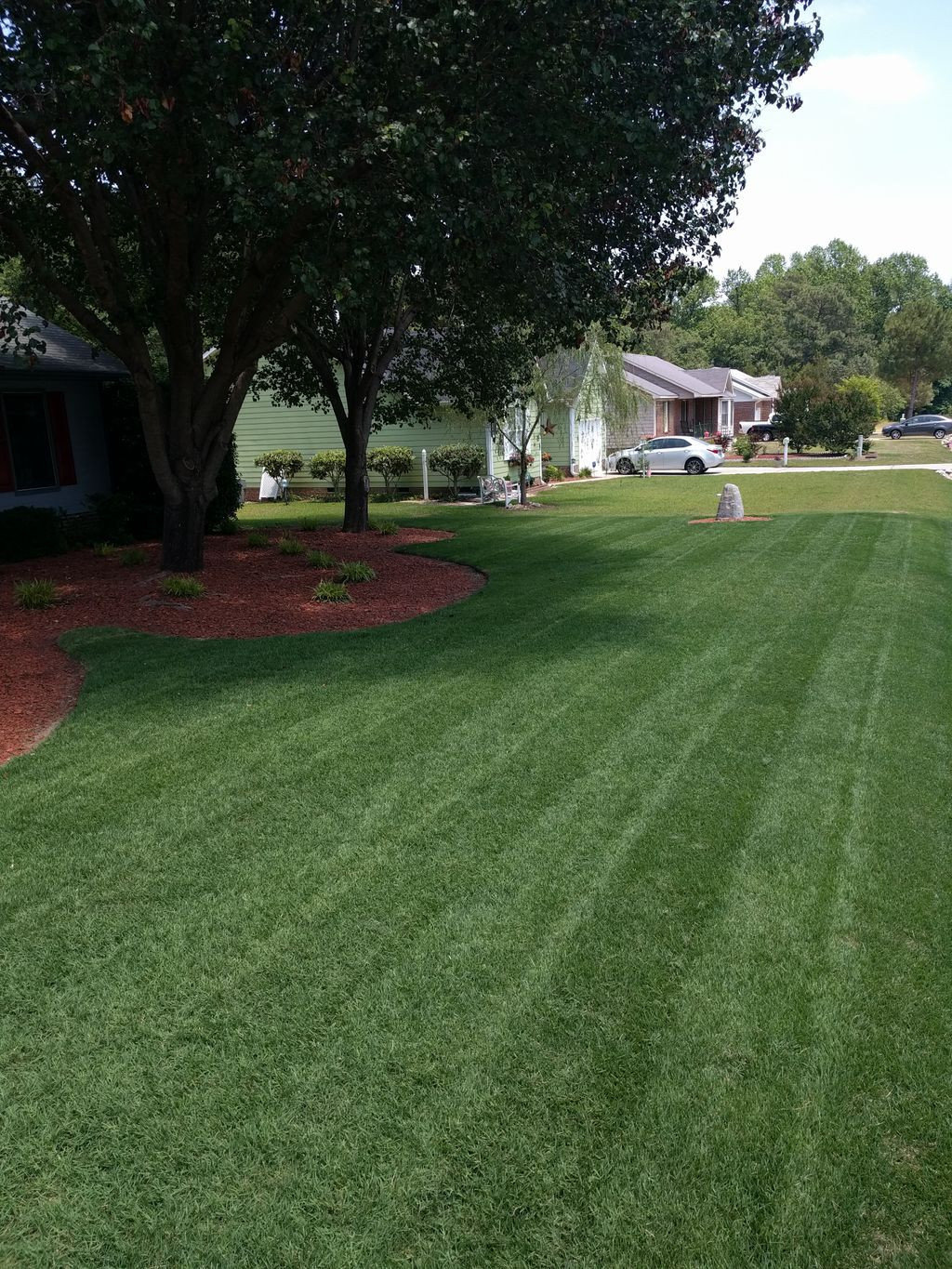 Zoysia Lawn in North Carolina